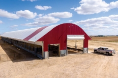 cattle barns pictures